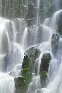 Ramona Falls, Mount Hood Wilderness, Oregon.