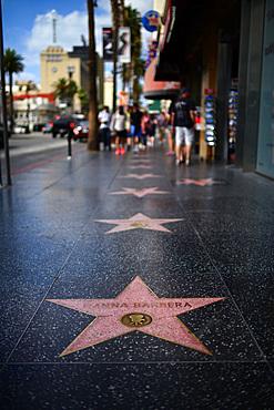Hanna Barbera star on the Hollywood Walk of Fame, Los Angeles, California.