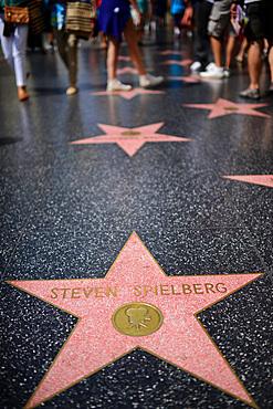 Steven Spielberg star in Hollywood Walk of Fame, Los Angeles, California.