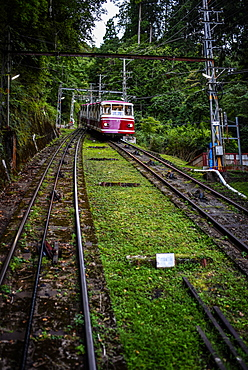 Cable car to Koyasan (Mount K?ya), huge temple settlement in Wakayama Prefecture to the south of Osaka.