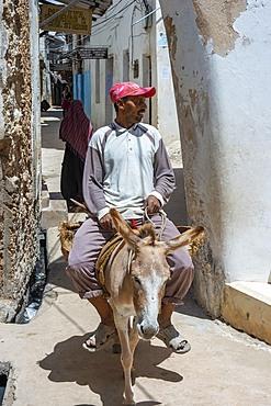 Man riding a donkey on the narrow street of Lamu town in Lamu Island, Kenya.