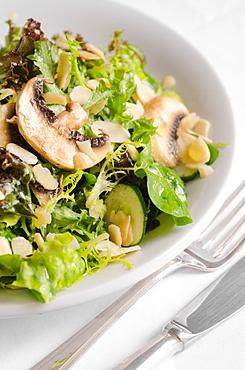 Leaves Salad mix