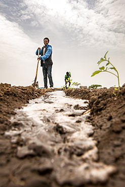 Meki Batu, Ethiopia - Young male worker irrigating the fields at the Fruit and Vegetable Growers Cooperative in Meki Batu.