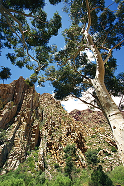 Swartberg Pass rock formation, Central Karoo, Western Cape, South Africa, Africa