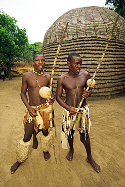 Two Zulu warriors in training with their bows and arrows, South Africa, Africa