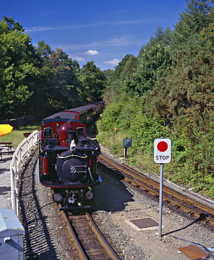 Ffestiniog Railway at Tan-y-Bwlch, the busiest of the North Wales narrow gauge railways, opened in 1836 to carry slate from Blaenau Ffestiniog to the coast, the first steam engines replaced horse power in 1863, Wales, United Kingdom, Europe