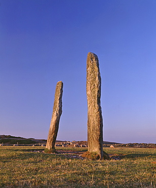 Penrhos Feilw standing stones, 3m high and 3.3m apart, probably erected in the early Bronze Age between 2000 and 1500BC, Anglesey, Gwynedd, North Wales, United Kingdom, Europe