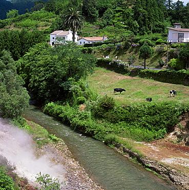 Hot springs, Furnas, island of Sao Miguel, Azores, Portugal, Europe