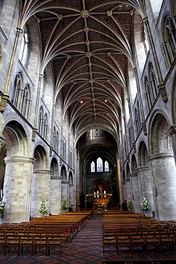 Nave, Hereford Cathedral, Hereford, Herefordshire, England, United Kingdom, Europe