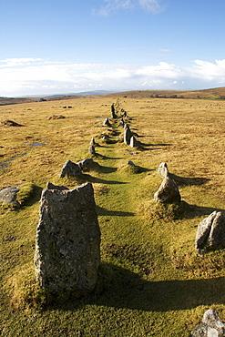 Prehistoric ceremonial lines of stones, Merrivale, Dartmoor National Park, Devon, England, United Kingdom, Europe