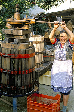 A local winemaker pressing her grapes at the cantina, Torano Nuovo, Abruzzi, Italy, Europe