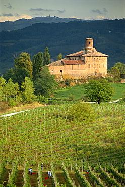 An ancient fortified wine cantina, Tenuta la Volta, near Barolo, Piemonte, Italy, Europe