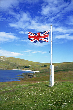 West Falkland, Westpoint Island, Falkland Islands, South America