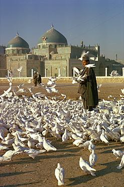 Man feeding white doves in front of the shrine of Ali at Mazar-i-Sharif in Afghanistan, Asia