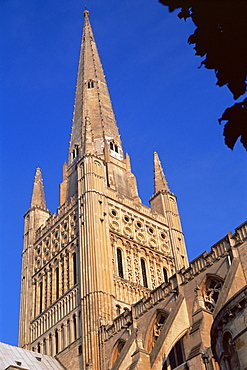Norwich cathedral, tower dating from 11th century, with 15th century spire, Norwich, Norfolk, England, United Kingdom, Europe