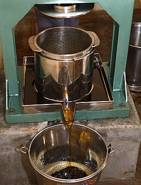Ayurvedic Oil Production Process at Soukya Holistic Health Centre in India, Asia