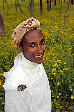 Portrait of a beautiful Ethiopian woman in the countryside near Gonder, The Ethiopian Highlands, Ethiopia, Africa