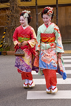 Maiko (apprentice geisha) walking in the streets of the Gion district wearing traditional Japanese kimono and okobo (tall wooden shoes), Kyoto, Kansai region, island of Honshu, Japan, Asia