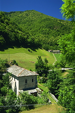 Houses and fields in the Pesio Valley near Certosa di Pesio in Piedmont, Italy, Europe
