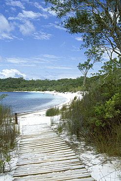Lake McKenzie, Fraser Island, UNESCO World Heritage Site, Queensland, Australia, Pacific