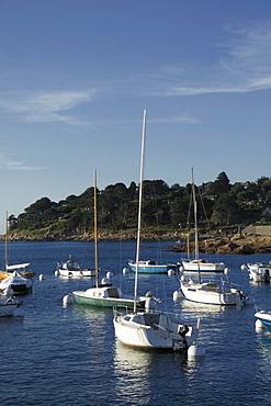 Trebeurden harbour, Cote de Granit Rose, Cotes d'Armor, Brittany, France, Europe