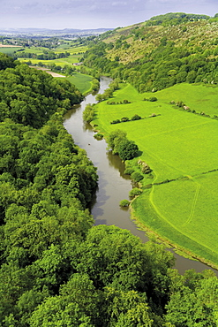 The River Wye and Wye Valley from Symonds Yat rocks, Herefordshire, England, United Kingdom, Europe