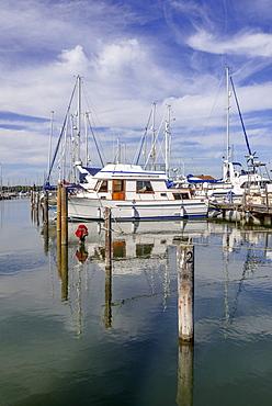 Chichester harbour, estuary, West Sussex, England, United Kingdom, Europe