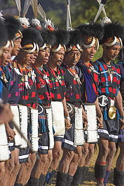Naga tribal groups lined up in traditional clothes waiting for the arrival of the General, wearing headdress made of woven cane decorated with wildboar teeth, bear fur and topped with hornbill feather, with bear teeth necklaces, also wearing aprons decorated with cowrie shells, Naga New Year Festival, Lahe village, Sagaing Division, Myanmar (Burma), Asia