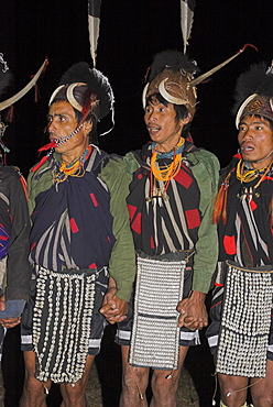 Naga men dancing at Grand Finale wearing headdress made of woven cane decorated with wild boar teeth, Mithan horns (wild cow) and bear fur topped with hornbill feather with tiger teeth necklaces and cowrie shell aprons, Lahe village, Naga New Year Festival, Sagaing Division, Myanmar (Burma), Asia