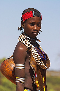 Hamer lady wearing traditional goat skin dress decorated with cowie shells, carrying kalash on her way to market, Dombo village, Turmi, Lower Omo valley, Ethiopia, Africa