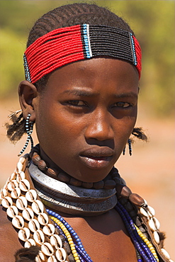 Hamer lady wearing traditional goat skin dress decorated with cowie shells, Dombo village, Turmi, Lower Omo valley, Ethiopia, Africa