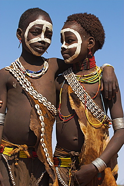 Two Hamer (Hamar) girls wearing traditional goat skin dress decorated with cowie shells, Dombo Village, Turmi, Lower Omo Valley, Ethiopia, Africa