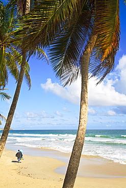 Playa El Agua, Isla De Margarita (Margarita Island), Nueva Esparta, Venezuela, South America