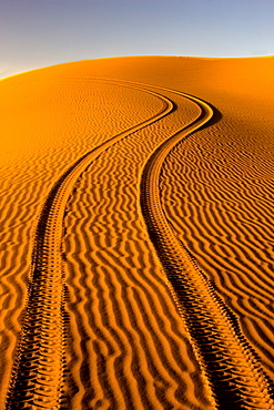 Fresh tyre tracks left by 4x4 recreational vehicle in the pristine sands of the Erg Chebbi sand sea near Merzouga, Morocco, North Africa, Africa