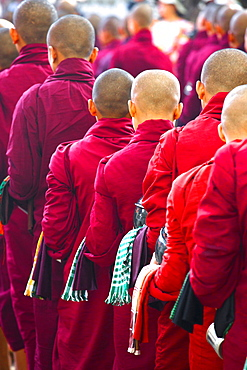 Buddhist monks queuing for a meal at Mahagandayon Monastery, where some 2000 monks are fed daily, Mandalay, Myanmar (Burma), Southewast Asia