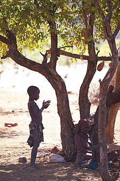 Young Himba boy standing in the shade of a tree in semi-silhouette, Kunene Region (formerly Kaokoland) in the far north of Namibia
