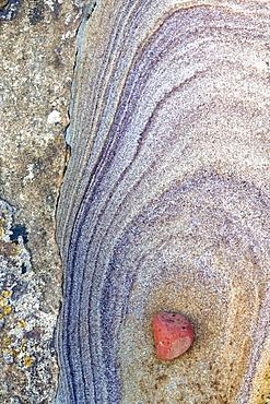 Patterns created by sea erosion on rocks at Rumbling Kern, near Howick, Alnwick, Northumberland, England, United Kingdom, Europe