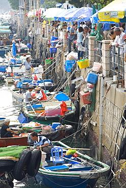 Fishing boats, Sai Kung, New Territories, Hong Kong, China, Asia