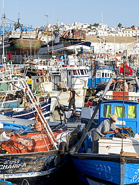 Fishing boats in port, Tangier, Morocco, North Africa, Africa
