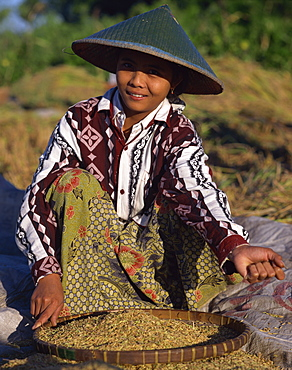 Harvesting processing, Lombok, Indonesia, Southeast Asia, Asia