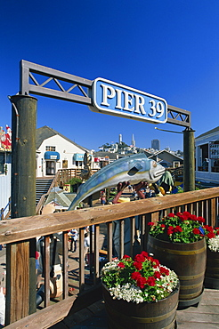 Sign for Pier 39, Fisherman's Wharf, with Coit Tower and Transamerica Pyramid on city skyline in the background, San Francisco, California, United States of America, North America