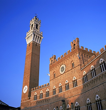 The Torre del Mangia and Palazzo Pubblico, Siena, Tuscany, Italy, Europe