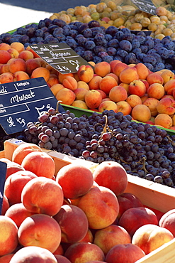 Fruit, peaches and grapes, for sale on market in the Rue Ste. Claire, Annecy, Haute-Savoie, Rhone-Alpes, France, Europe