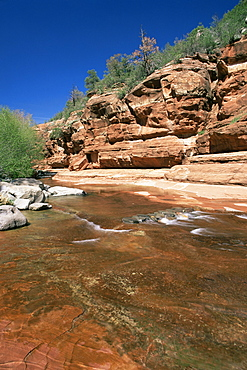Red rocks towering above the shallow waters of Oak Creek, Slide Rock State Park, Sedona, Arizona, United States of America (U.S.A.), North America