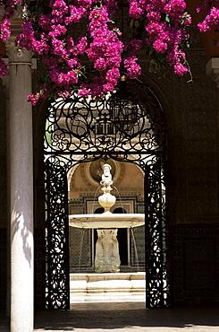 View through wrought iron gateway to the Patio Principal, and bougainvillea, Casa de Pilatos, Seville, Andalucia (Andalusia), Spain, Europe