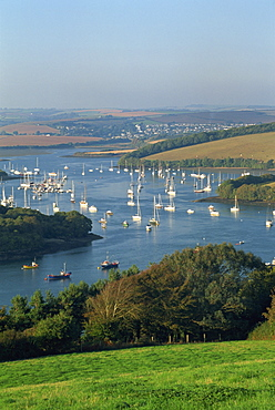 View over the Kingsbridge Estuary from East Portlemouth, Salcombe, Devon, England, United Kingdom, Europe