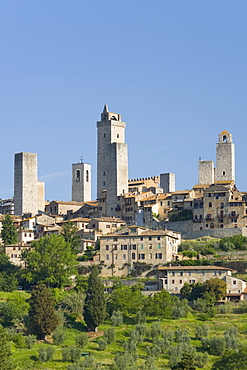 View across field to typical houses and medieval towers, San Gimignano, UNESCO World Heritage Site, Siena, Tuscany, Italy, Europe
