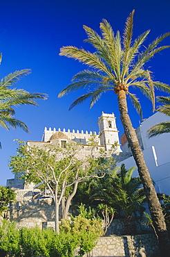 Church framed by palm trees, Peniscola, Costa del Alzahar, Valencia, Spain, Europe