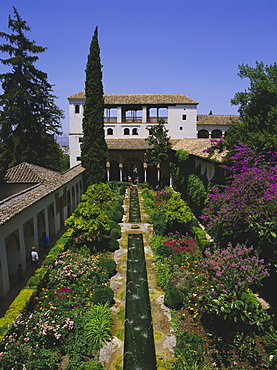 Gardens of the Generalife, the Alhambra, Granada, Andalucia (Andalusia), Spain, Europe - 395-372