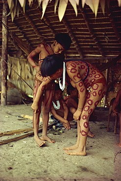 Yanomami indian girls painting each other, Brazil, South America - 42-2286